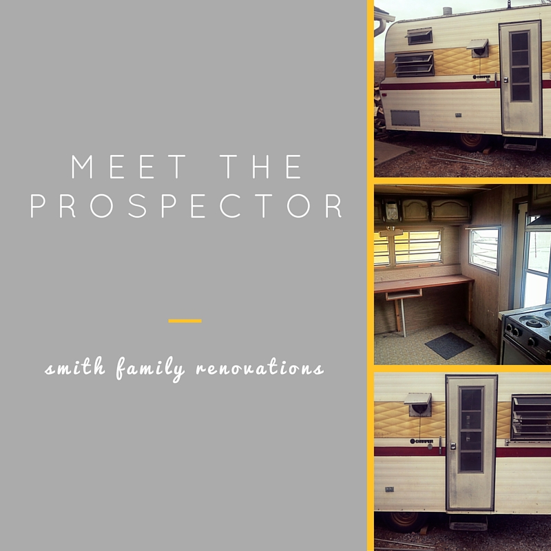 meet theprospector